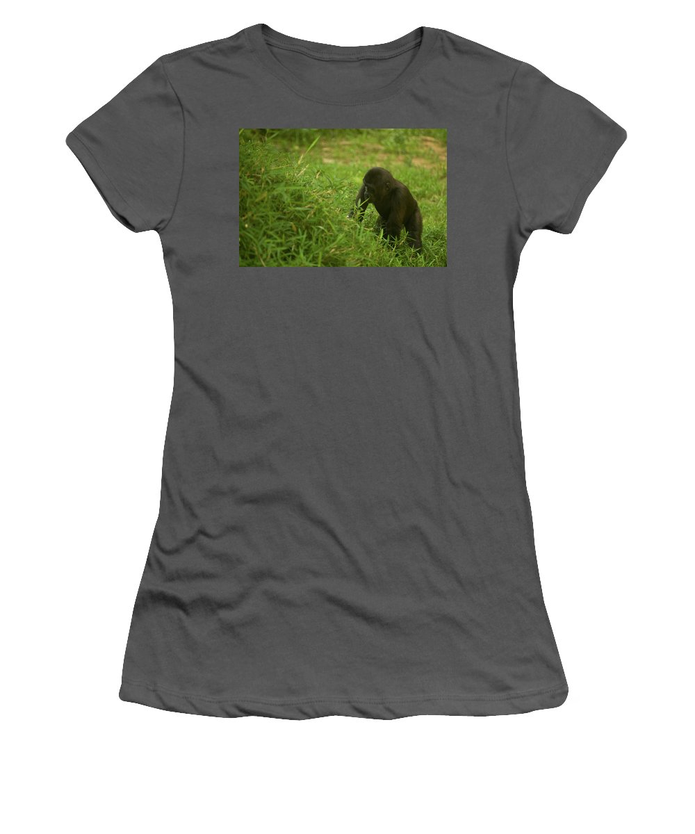 Kibibi Women's T-Shirt (Athletic Fit) featuring the photograph The Climb by Paul Mangold