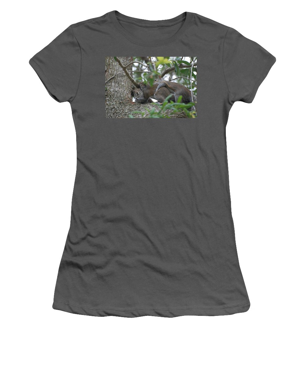 Squirrels Women's T-Shirt (Athletic Fit) featuring the photograph The Fight For Life by Rob Hans