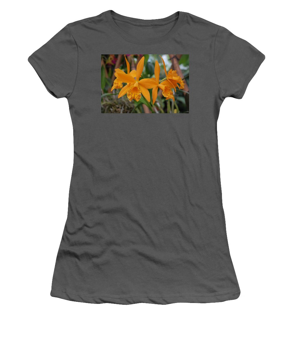 Macro Women's T-Shirt (Athletic Fit) featuring the photograph The Orange Orchids by Rob Hans