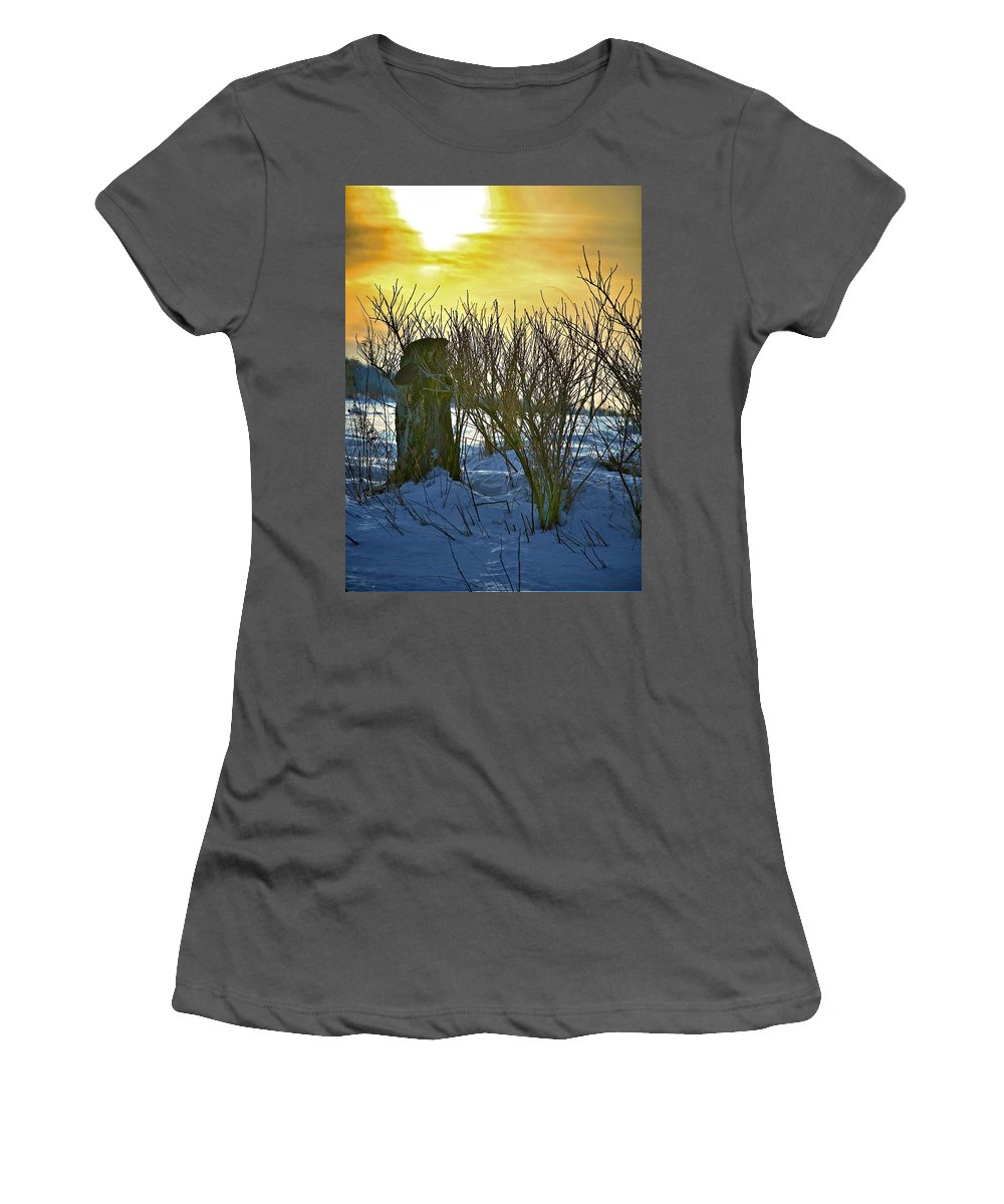 Sun Shine Nature Women's T-Shirt (Athletic Fit) featuring the photograph The Rabbit Trail by Robert Pearson