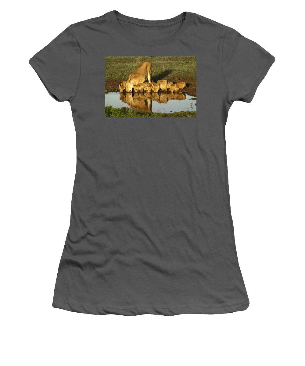 Lion Women's T-Shirt (Athletic Fit) featuring the photograph Thirsty Lions by Michele Burgess