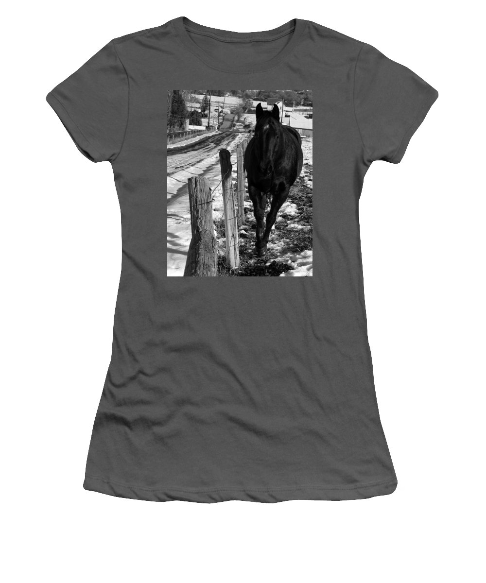 Horse Women's T-Shirt (Athletic Fit) featuring the photograph Towing The Line by Samantha Burrow