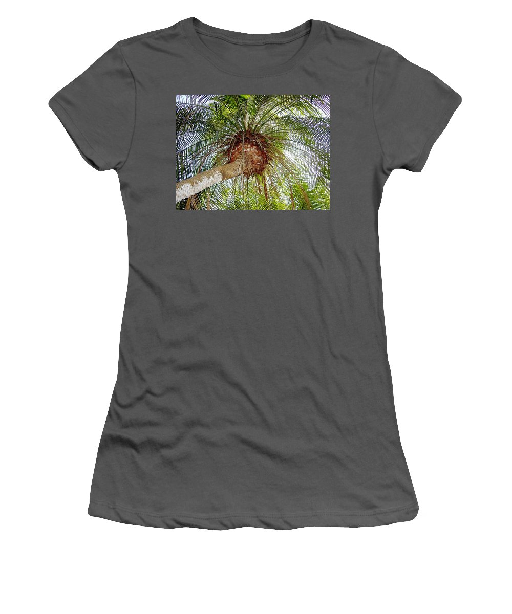 Tree Women's T-Shirt (Athletic Fit) featuring the photograph Tree Spray by Deborah Crew-Johnson
