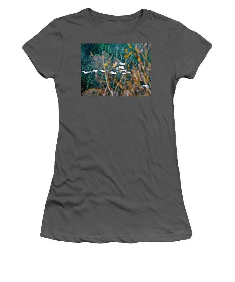 Nature Women's T-Shirt (Athletic Fit) featuring the photograph Tundra Swans by Albert Seger