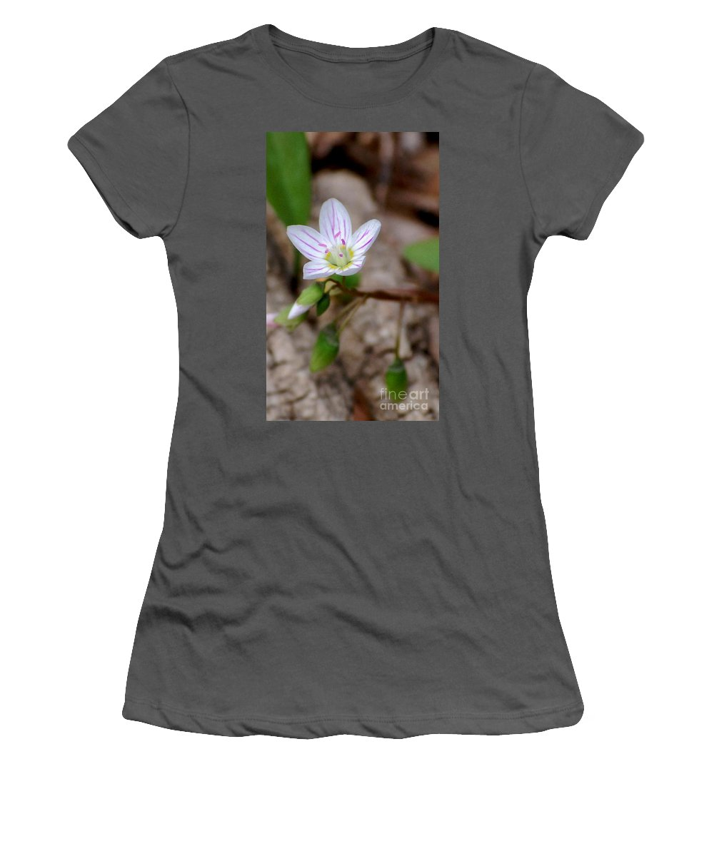 Floral Women's T-Shirt (Athletic Fit) featuring the photograph Untitiled Floral by David Lane