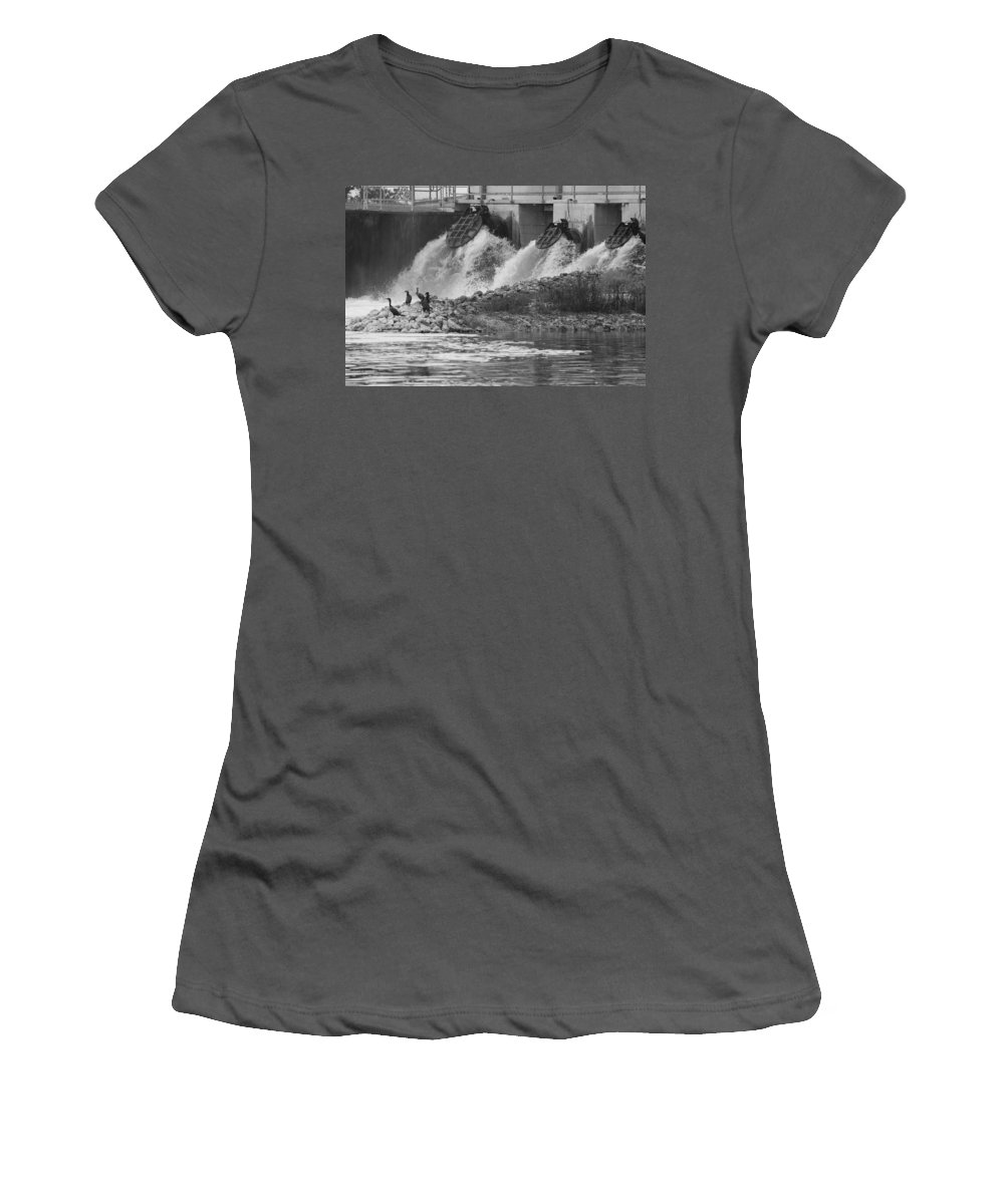 Water Women's T-Shirt (Athletic Fit) featuring the photograph Water Birds by Rob Hans