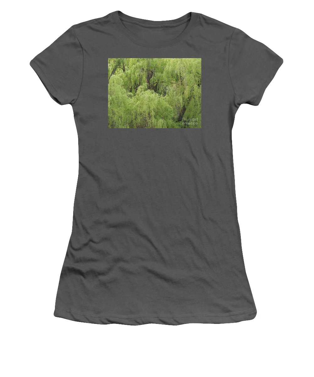 Willow Women's T-Shirt (Athletic Fit) featuring the photograph Weeping by Ann Horn