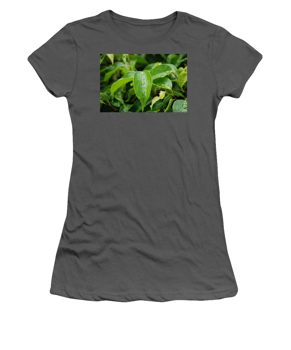 Macro Women's T-Shirt (Athletic Fit) featuring the photograph Wet Bushes by Rob Hans