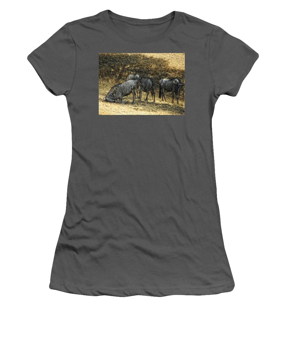 Wildebeast Women's T-Shirt (Athletic Fit) featuring the photograph What A Bewildering Day by Donna Blackhall