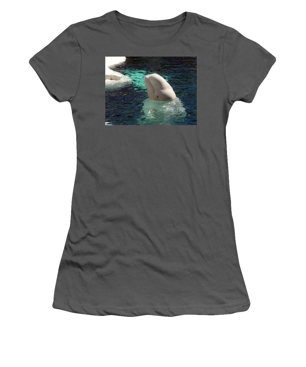 Whale Women's T-Shirt (Athletic Fit) featuring the photograph White Beluga Whale 1 by Angelina Vick