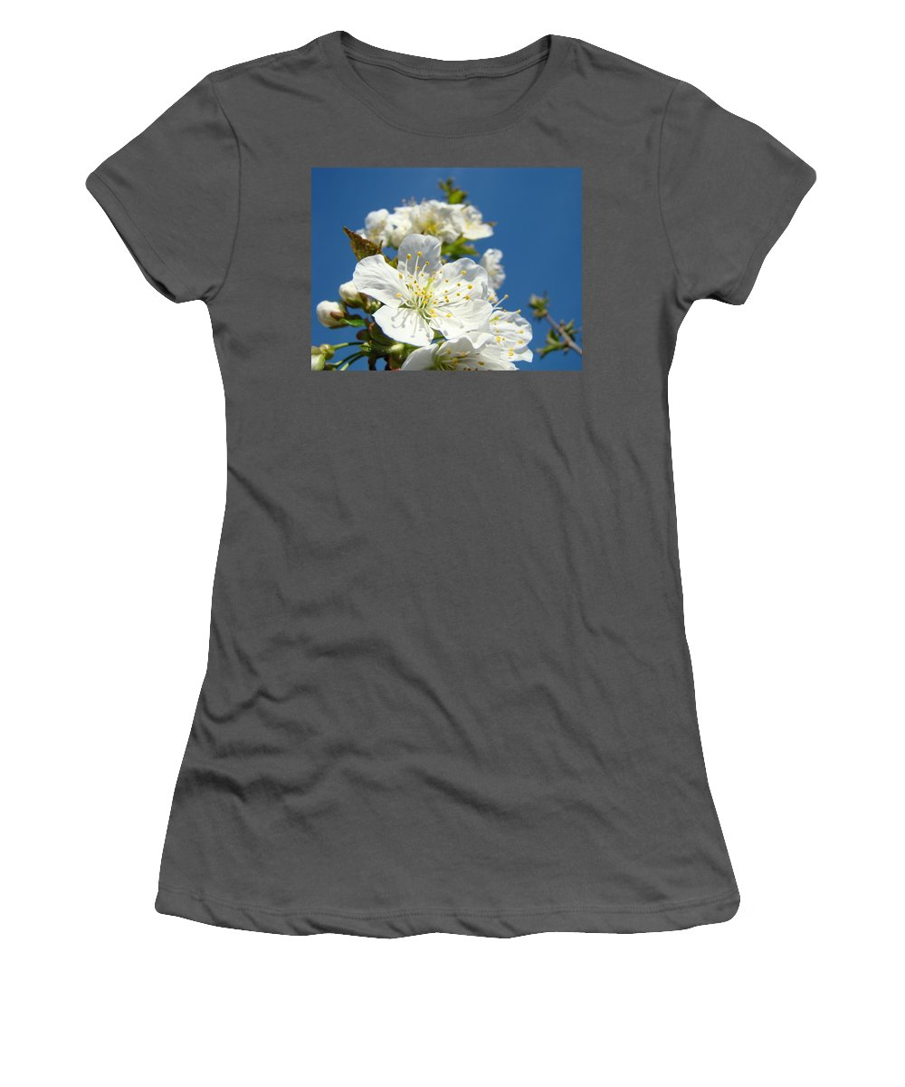Blossom Women's T-Shirt (Athletic Fit) featuring the photograph White Blossoms Art Prints Spring Tree Blossoms Canvas Baslee Troutman by Baslee Troutman