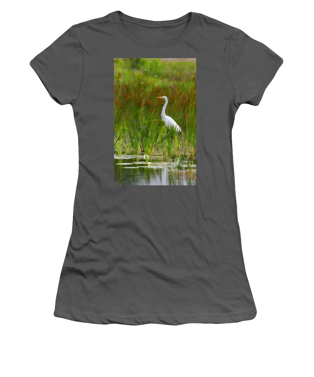 Bird Egret White Florida Swamp Pond Photograph Photography Women's T-Shirt (Athletic Fit) featuring the photograph White Egret In Waiting by Shari Jardina