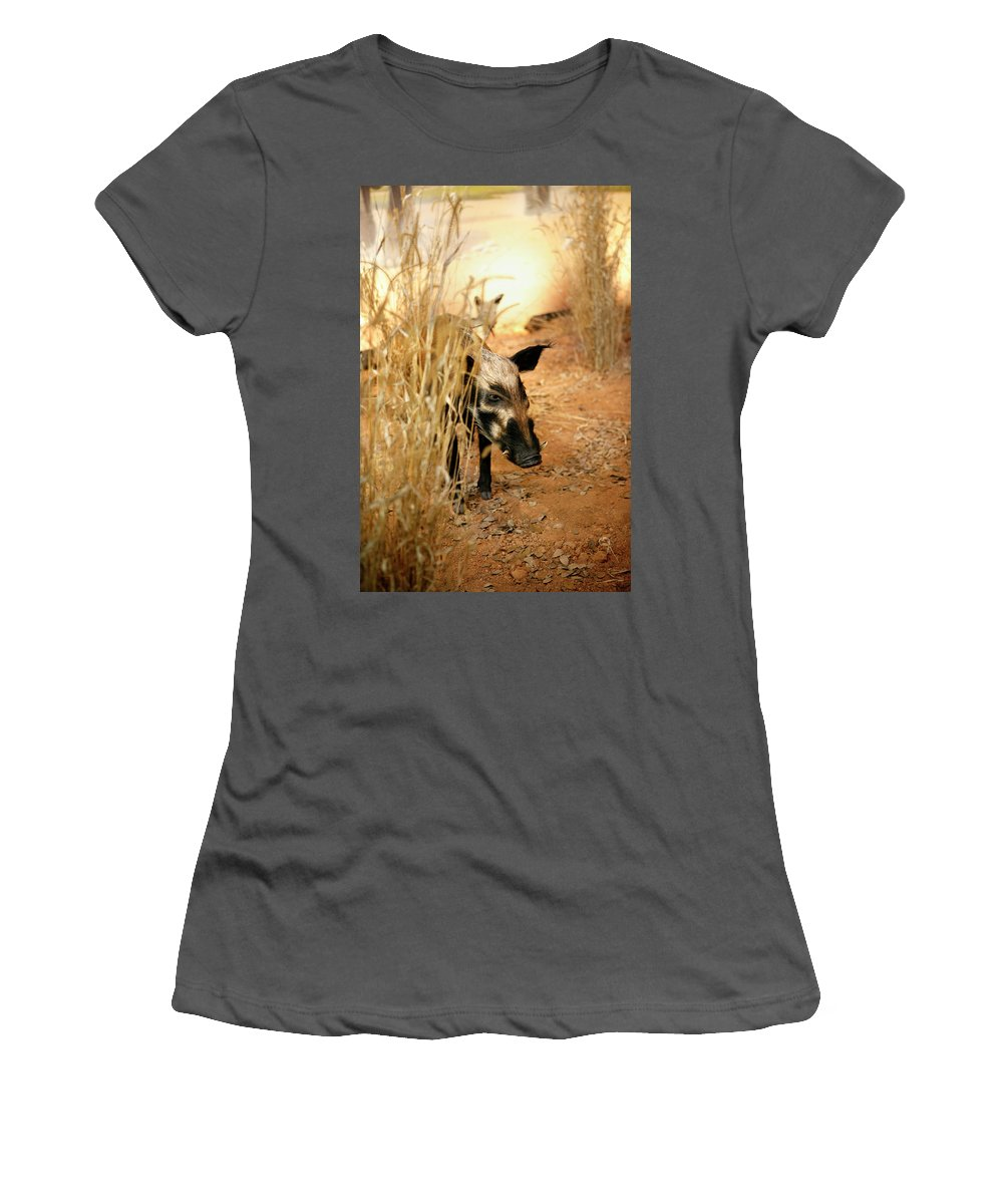 Wild Women's T-Shirt (Athletic Fit) featuring the photograph Wild Boar by Marilyn Hunt