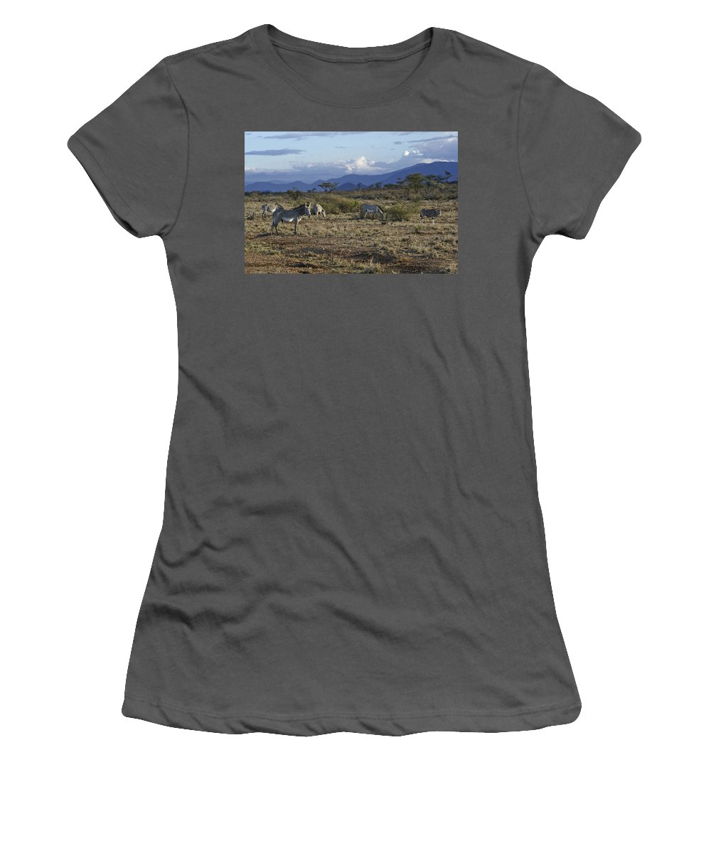 Africa Women's T-Shirt (Athletic Fit) featuring the photograph Wild Samburu by Michele Burgess