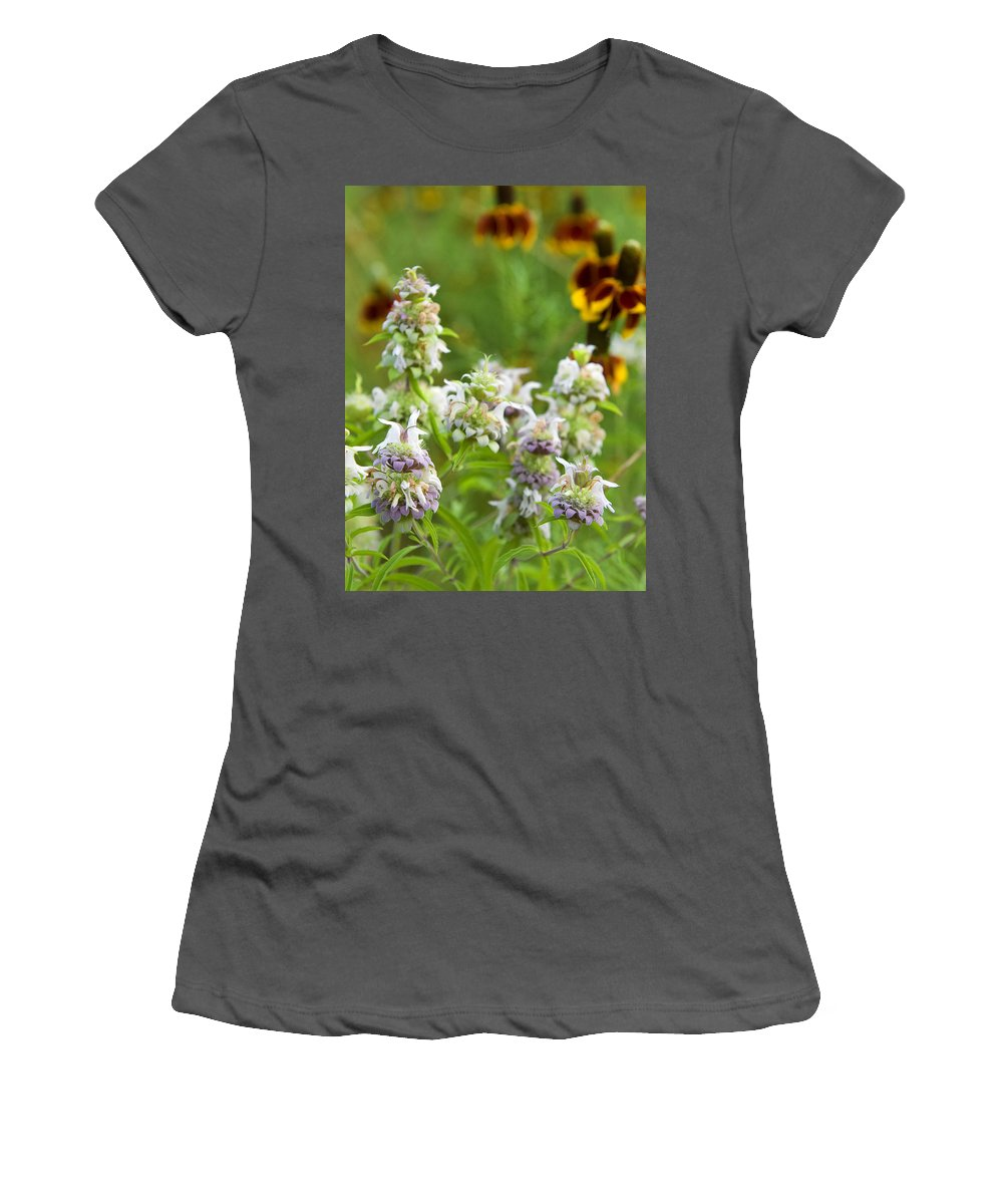 Wildflower Women's T-Shirt (Athletic Fit) featuring the photograph Wildflowers Three by Stephen Anderson