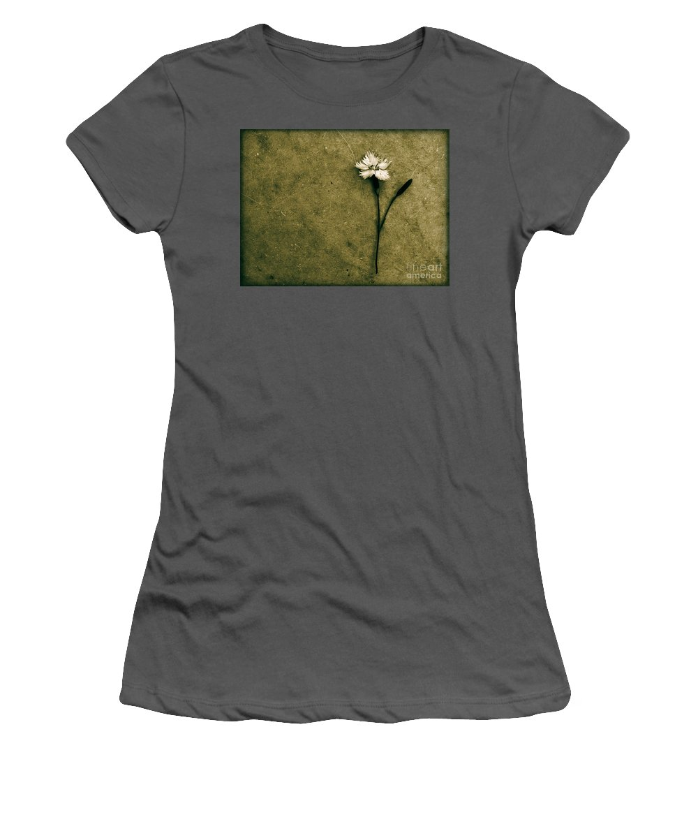 Dipasquale Women's T-Shirt (Athletic Fit) featuring the photograph Will You Stay With Me Will You Be My Love by Dana DiPasquale
