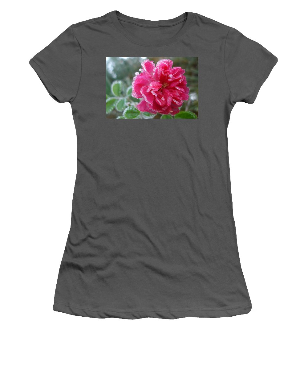 Rose Women's T-Shirt (Athletic Fit) featuring the photograph Winter Rose by Susan Baker