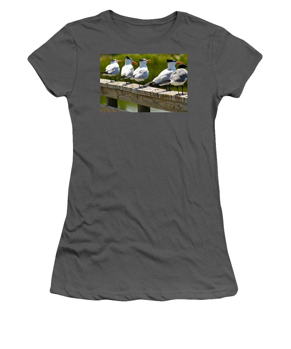 Bird Women's T-Shirt (Athletic Fit) featuring the photograph Yackety Yackety by Marilyn Hunt