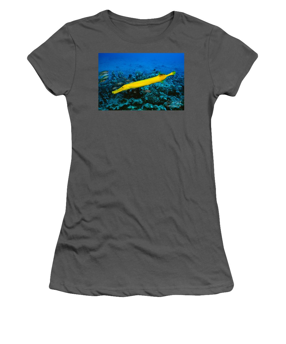 Aqua Women's T-Shirt (Athletic Fit) featuring the photograph Yello Trumpetfish by Dave Fleetham - Printscapes