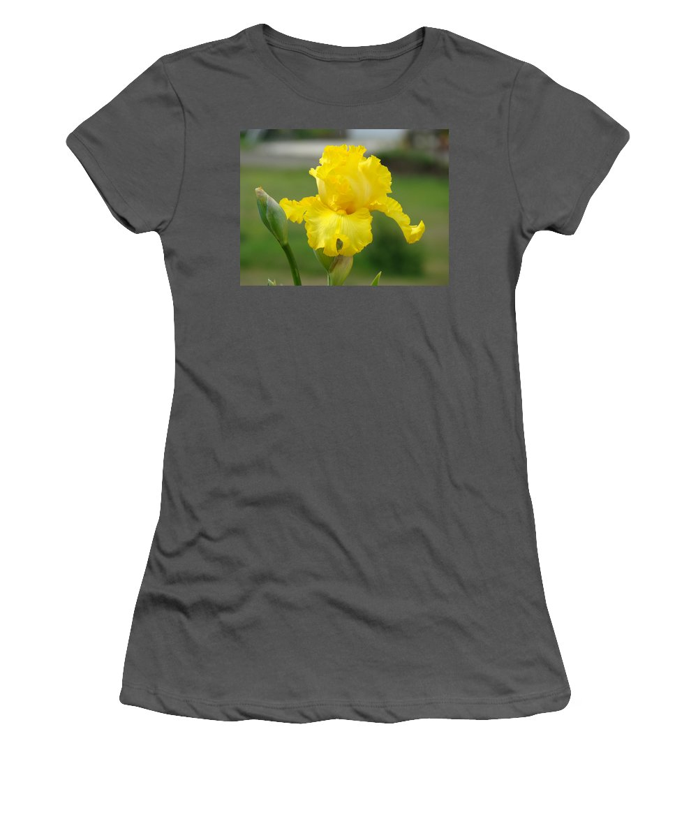 �irises Artwork� Women's T-Shirt (Athletic Fit) featuring the photograph Yellow Iris Flowers Art Prints Cards Irises Summer Garden Landscape by Baslee Troutman