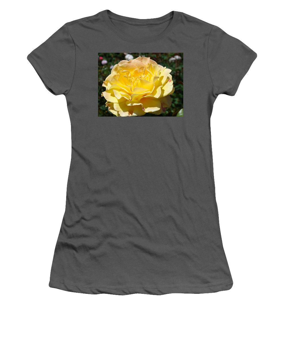 Rose Women's T-Shirt (Athletic Fit) featuring the photograph Yellow Rose Sunlit Summer Roses Flowers Art Prints Baslee Troutman by Baslee Troutman