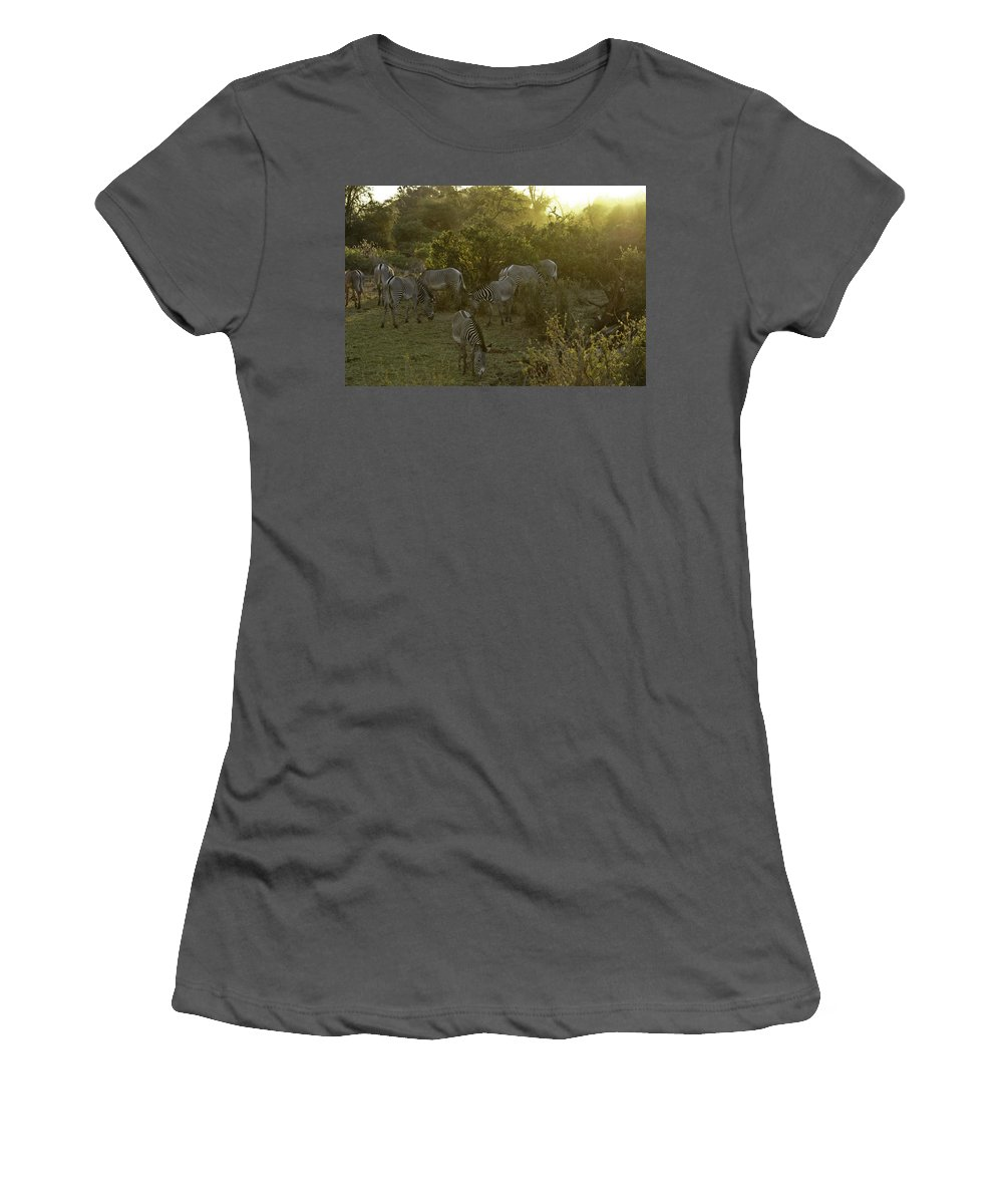 Africa Women's T-Shirt (Athletic Fit) featuring the photograph Zebras In A Glen by Michele Burgess