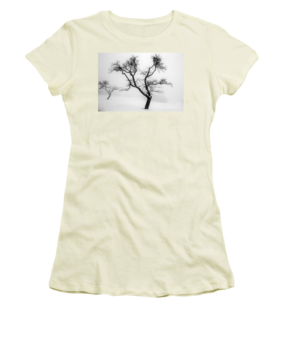 Empty Women's T-Shirt (Athletic Fit) featuring the photograph Tree In The Snow by Ilan Amihai