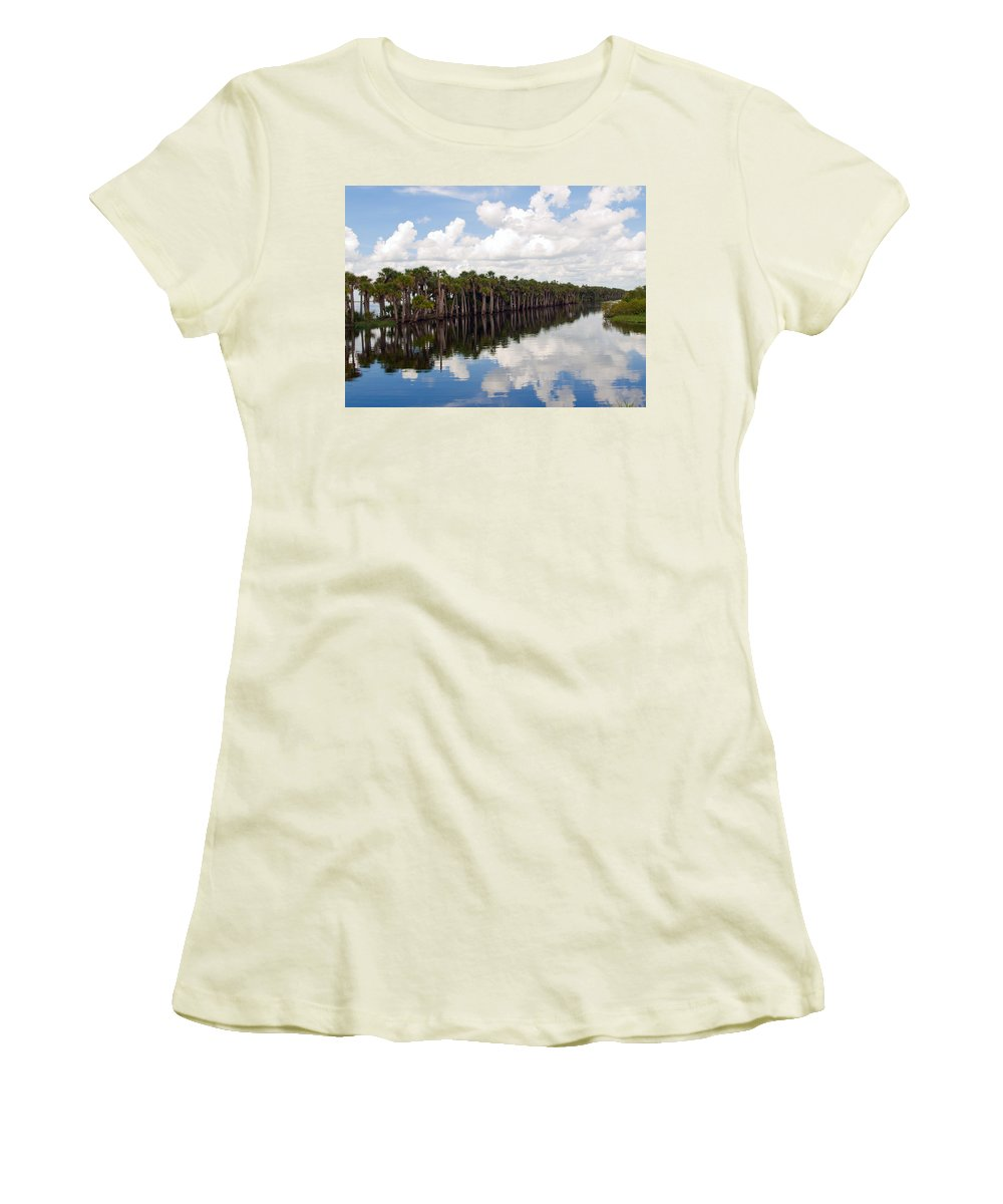 Florida; Water; Canal; Stick; Marsh; Drowned; Trees; Drown; Fellsmere; Sebastian; River; Indian; Clo Women's T-Shirt (Athletic Fit) featuring the photograph Stick Marsh In Fellsmere Florida by Allan Hughes