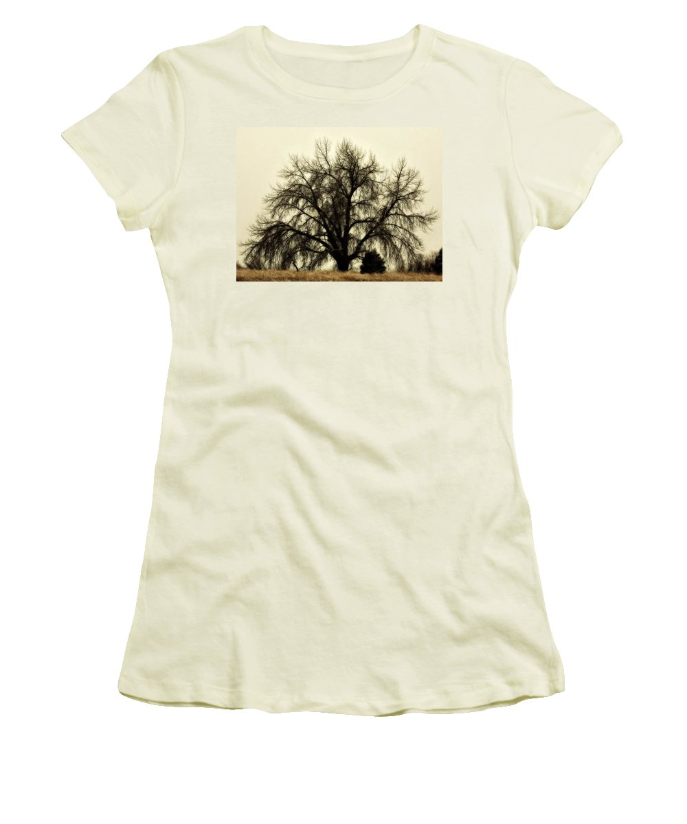 Tree Women's T-Shirt (Athletic Fit) featuring the photograph A Winter's Day by Marilyn Hunt