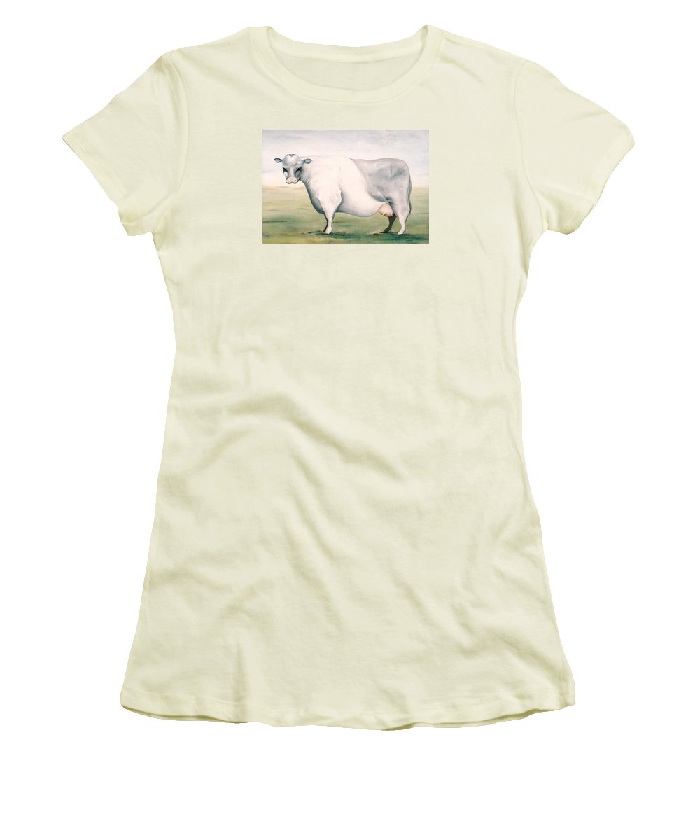 Beef Women's T-Shirt (Athletic Fit) featuring the painting Beef Holocaust I by Mark Cawood