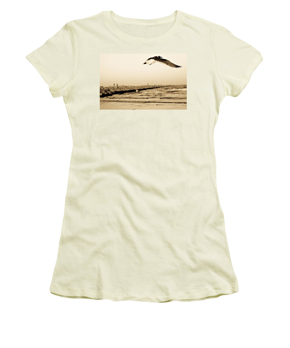 Bird Women's T-Shirt (Athletic Fit) featuring the photograph Coastal Bird In Flight by Marilyn Hunt
