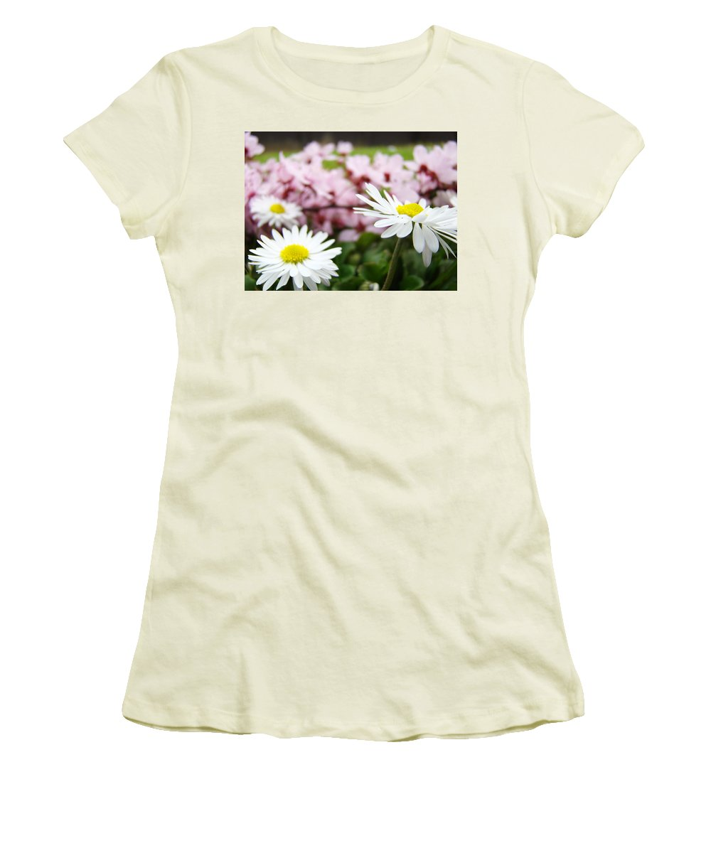 Daisies Women's T-Shirt (Athletic Fit) featuring the photograph Daisies Flowers Art Prints Spring Flowers Artwork Garden Nature Art by Baslee Troutman