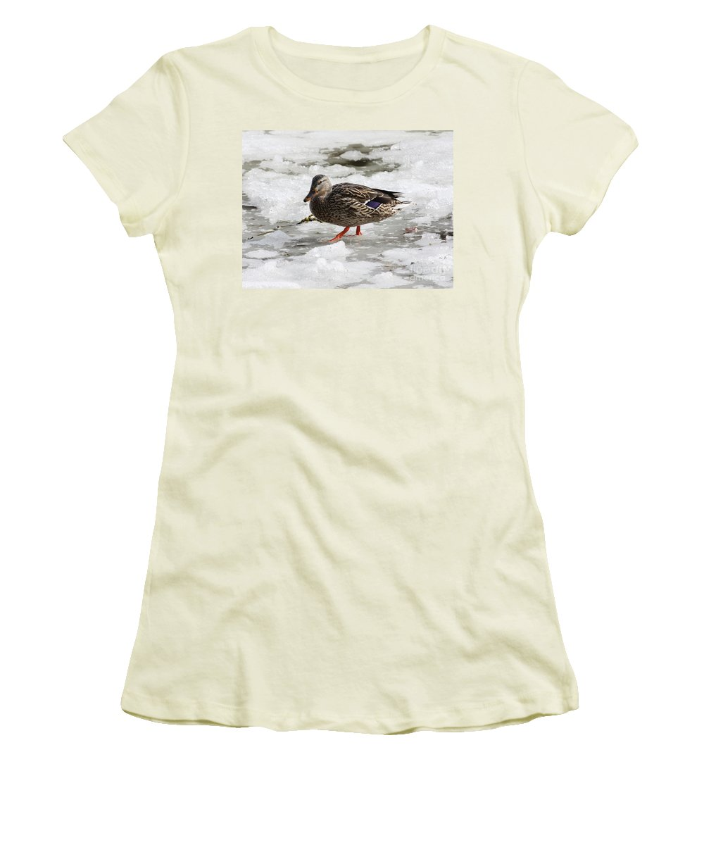 Duck Women's T-Shirt (Athletic Fit) featuring the photograph Duck Walking On Thin Ice by Carol Groenen