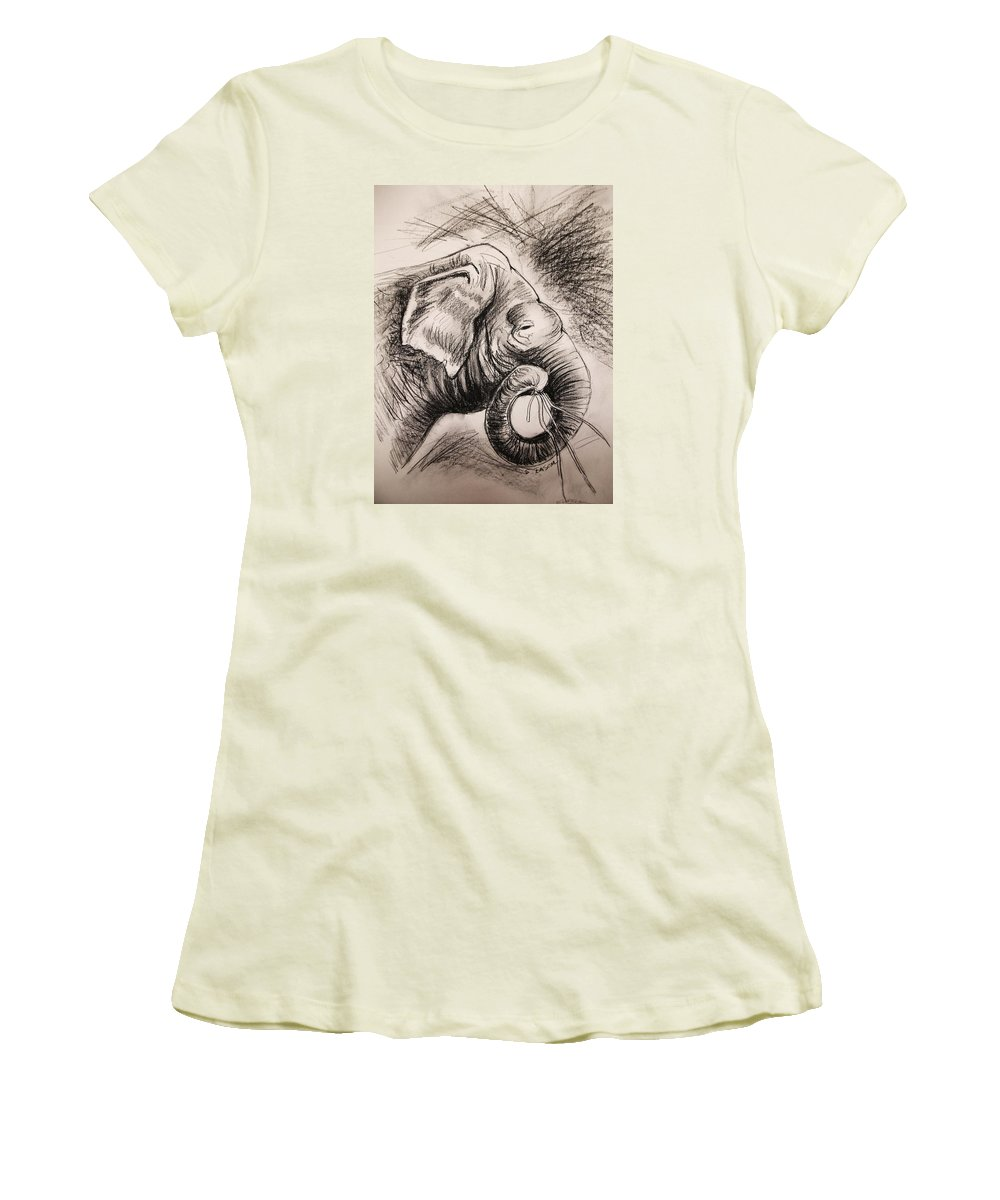 Animal Women's T-Shirt (Athletic Fit) featuring the drawing Elephant by Scott Easom