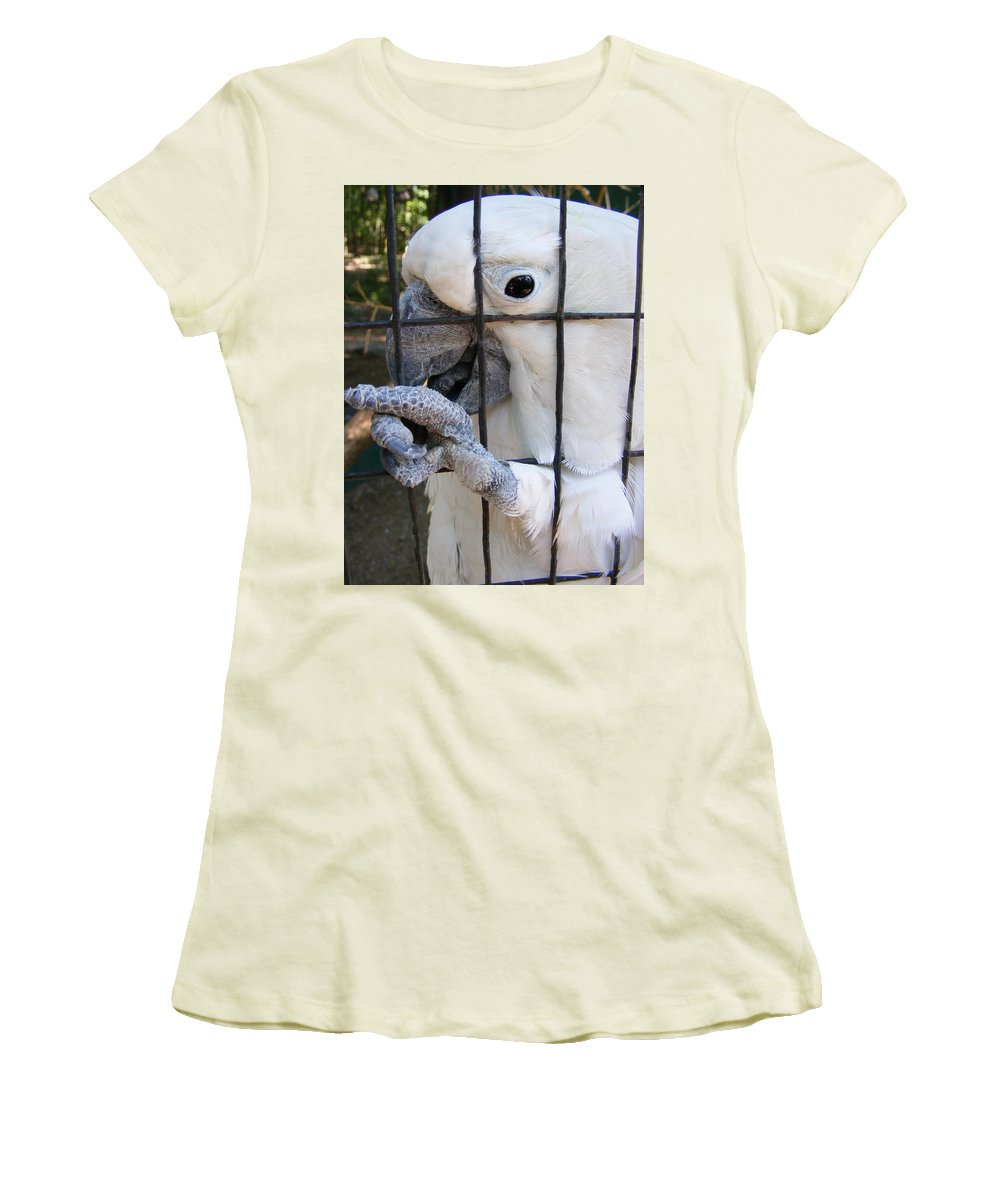 Bird Women's T-Shirt (Athletic Fit) featuring the photograph Hand Me The Key Please by Ed Smith