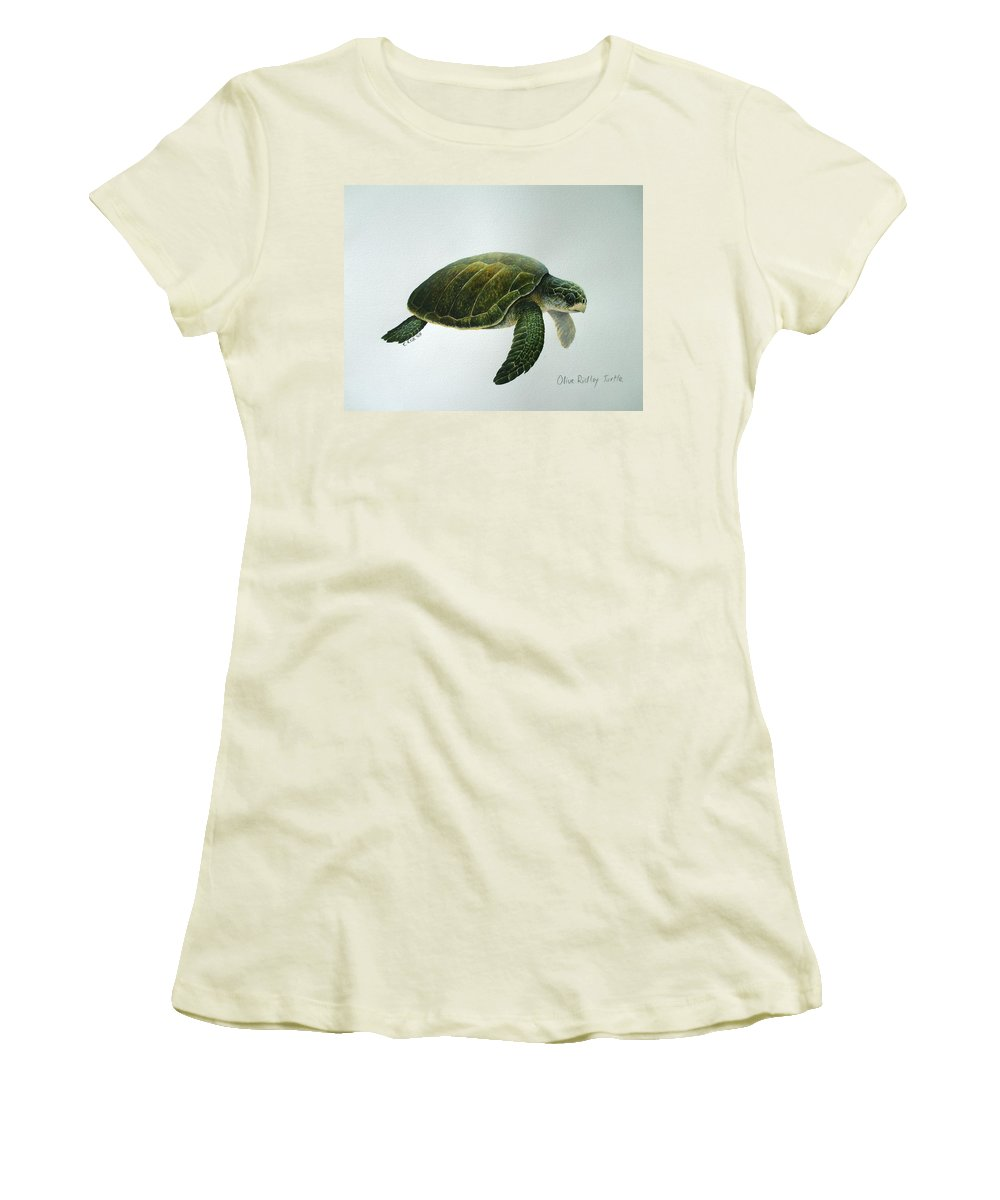 Olive Ridley Turtle Women's T-Shirt (Athletic Fit) featuring the painting Olive Ridley Turtle by Christopher Cox