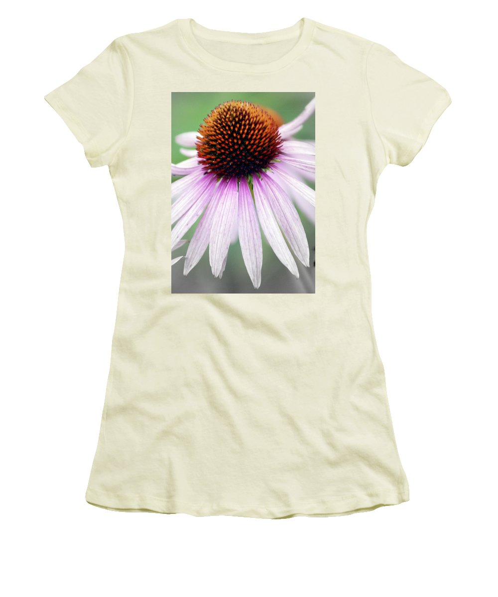 Flowers Women's T-Shirt (Athletic Fit) featuring the photograph Pale Grey by Marty Koch