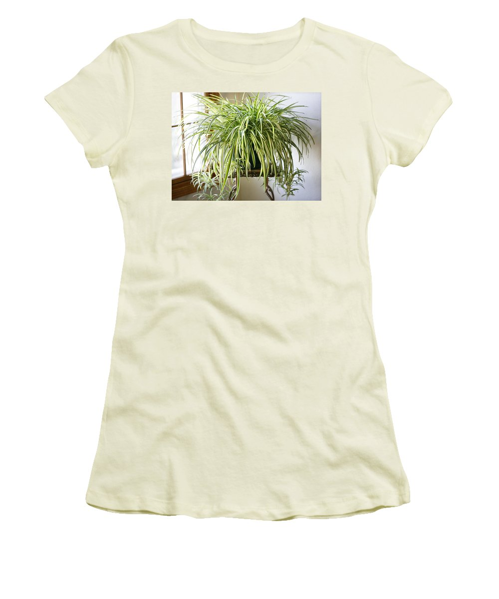 Spider Plant Women's T-Shirt (Athletic Fit) featuring the photograph Spider Plant by Marilyn Hunt
