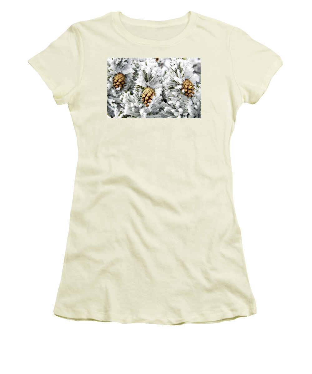 Frosty Women's T-Shirt (Athletic Fit) featuring the photograph Three Pinecones by Marilyn Hunt