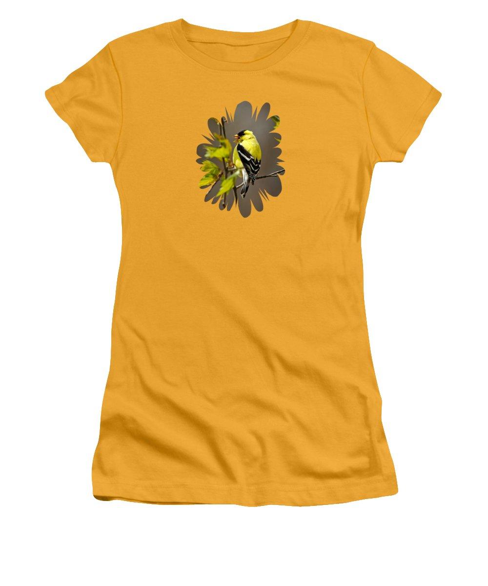 Finch Women's T-Shirts
