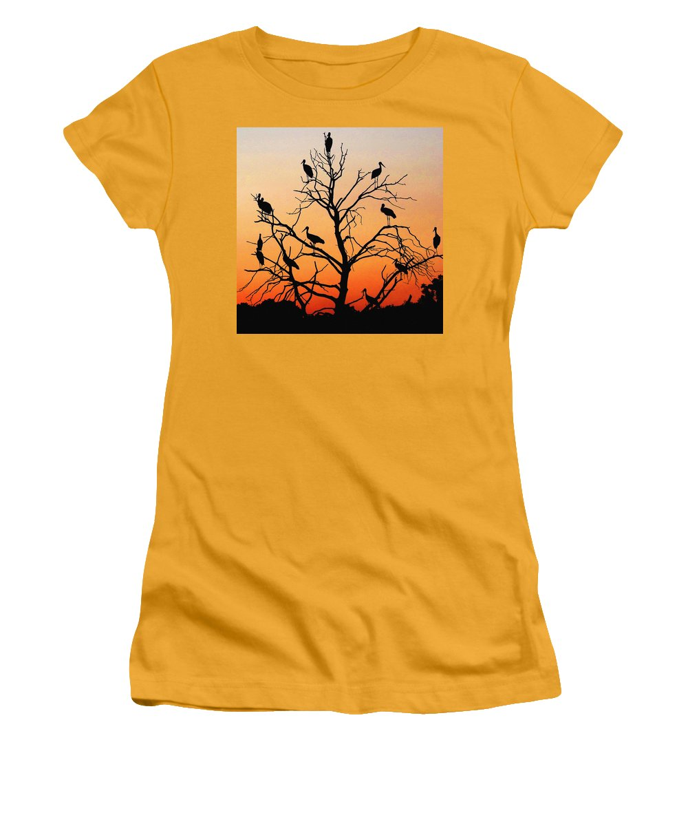 Storks Women's T-Shirt (Athletic Fit) featuring the photograph Storks In The Evening Sun Light by Cliff Norton