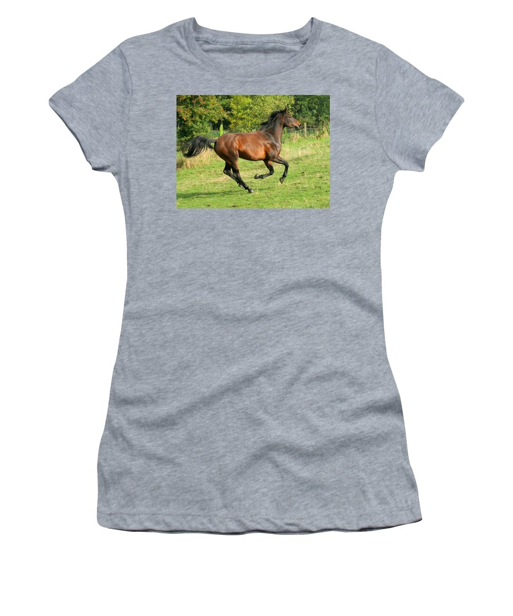 Horse Women's T-Shirt featuring the photograph Gallop by Angel Ciesniarska