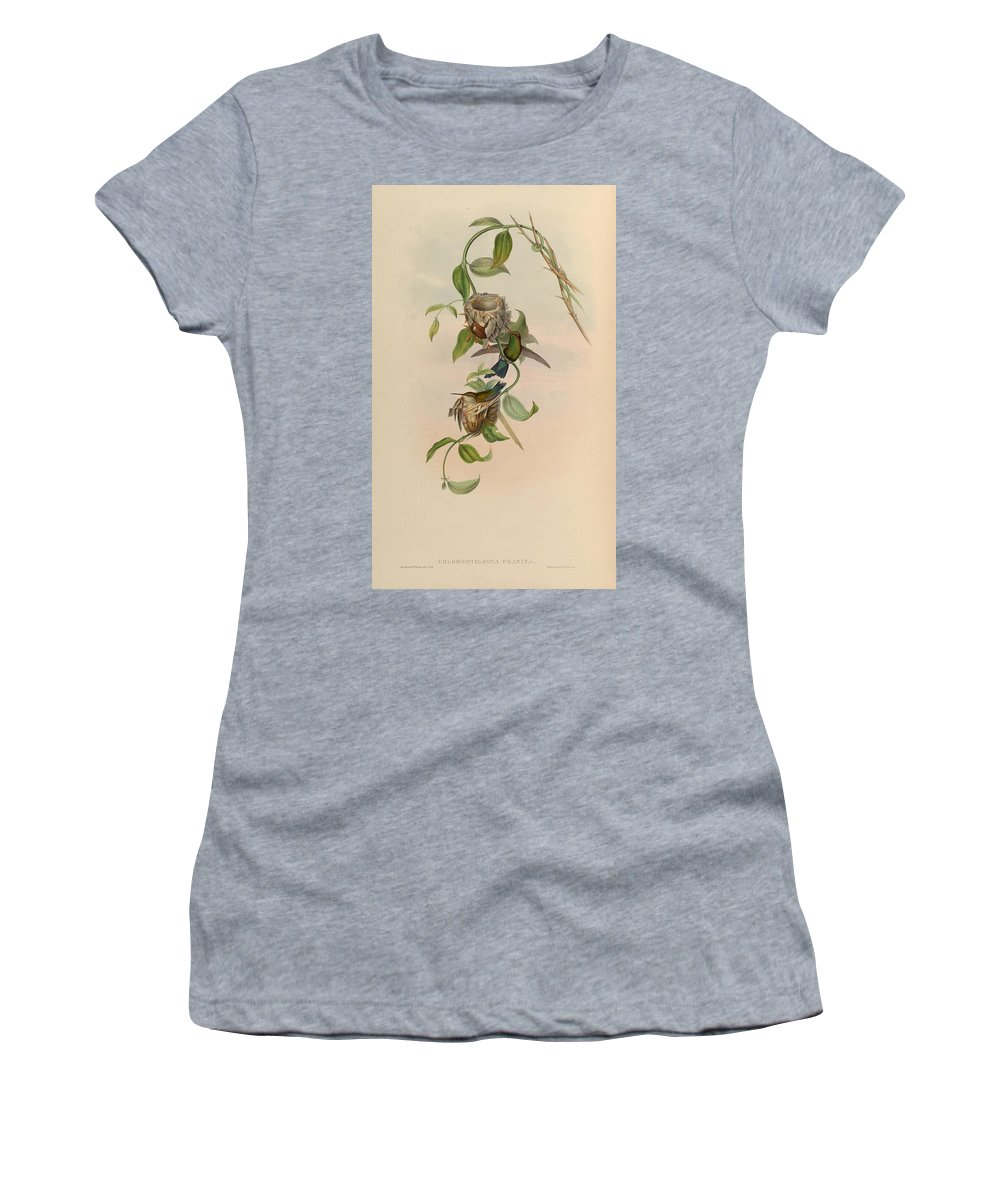 Hummingbird Women's T-Shirt (Athletic Fit) featuring the painting Hummingbirds by Philip Ralley