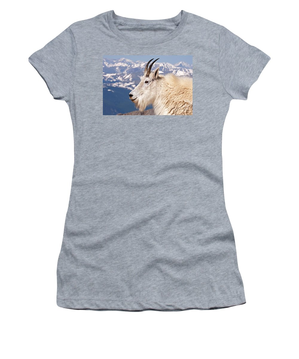 Arapaho National Forest Women's T-Shirt featuring the photograph Mountain Goat Portrait On Mount Evans by Fred Stearns