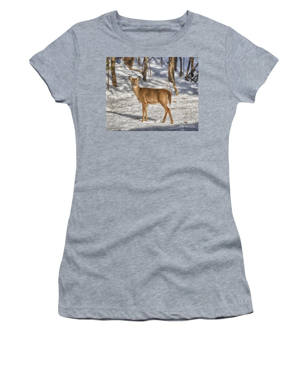 Deer Women's T-Shirt (Athletic Fit) featuring the photograph Passing By by Claudia Kuhn
