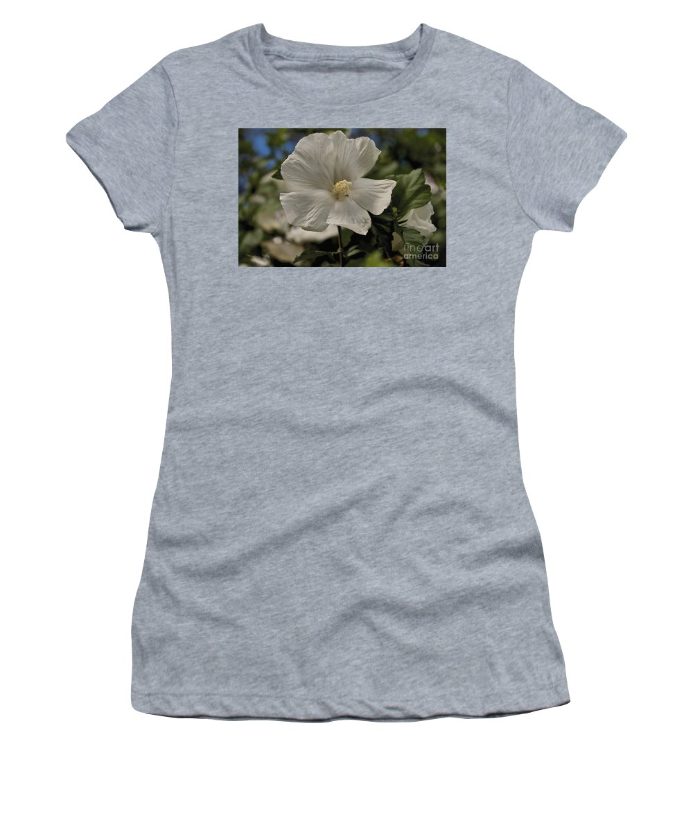 Tree Women's T-Shirt (Athletic Fit) featuring the photograph White by William Norton