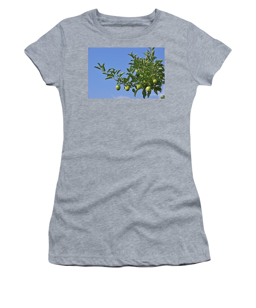 Malus Domestica Women's T-Shirt featuring the photograph 110414p073 by Arterra Picture Library