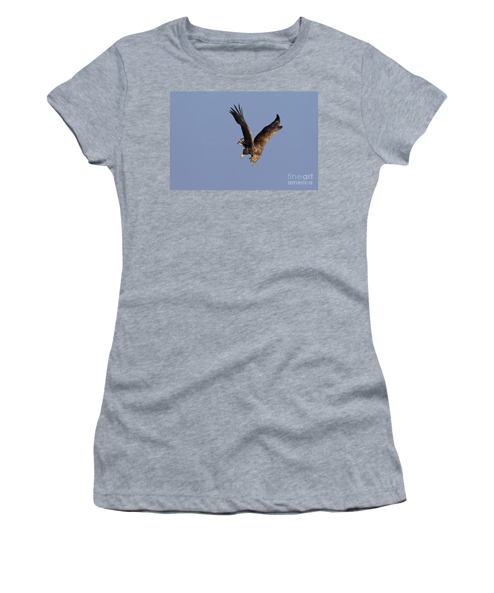 White-tailed Eagle Women's T-Shirt featuring the photograph 110613p223 by Arterra Picture Library