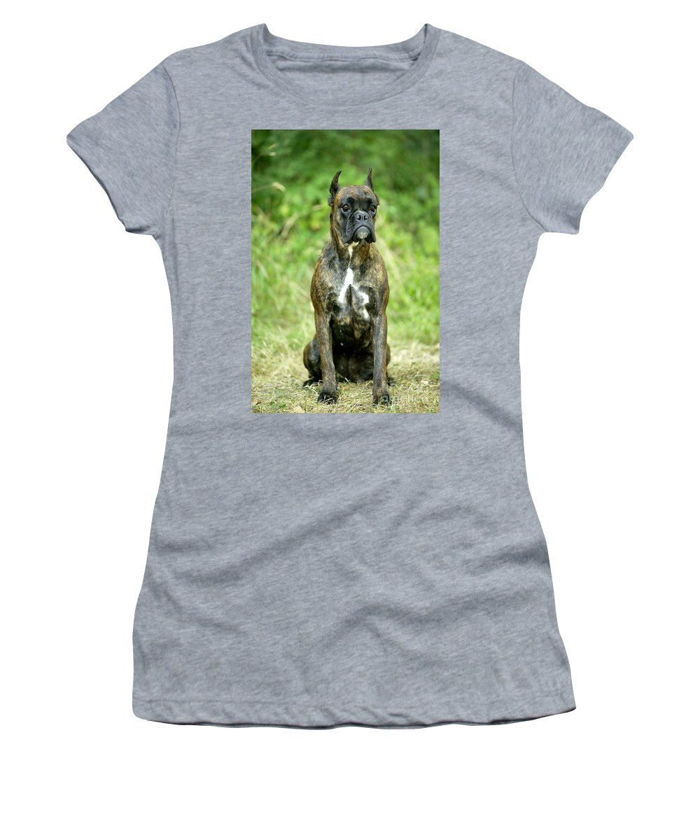 Boxer Women's T-Shirt (Athletic Fit) featuring the photograph Boxer Dog by Jean-Michel Labat