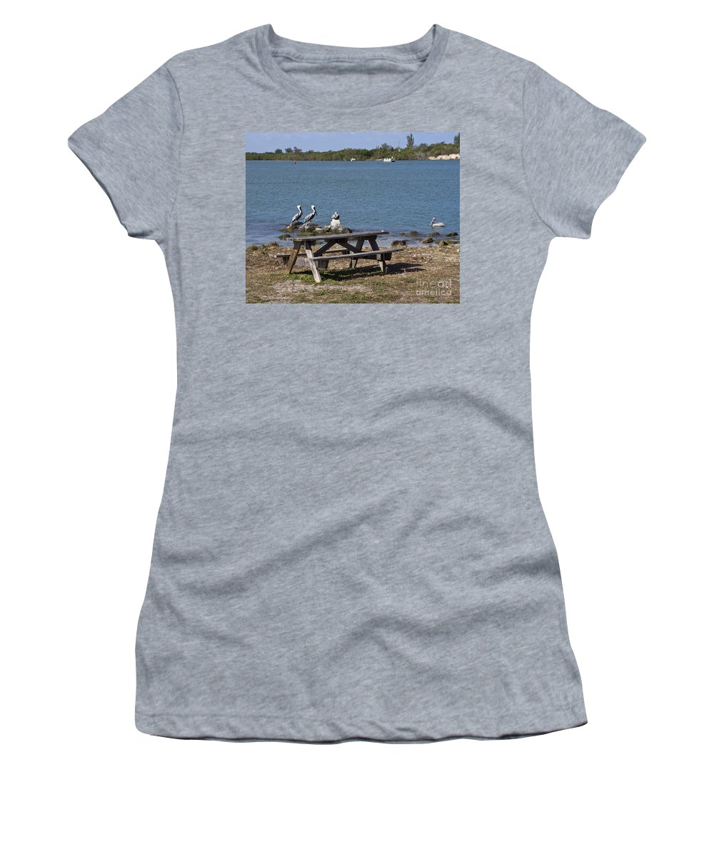 Pelicans Women's T-Shirt featuring the photograph Opening Day For Snook Fishing At Sebastian Inlet In Florida by Allan Hughes